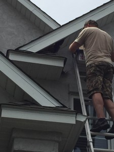Charlie rescuing baby raccoon from soffit.